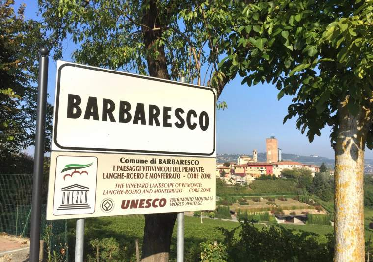 17 mondo bike tours piedmont barbaresco